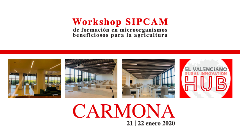 Workshop SIPCAM en Rural Innovation Hub