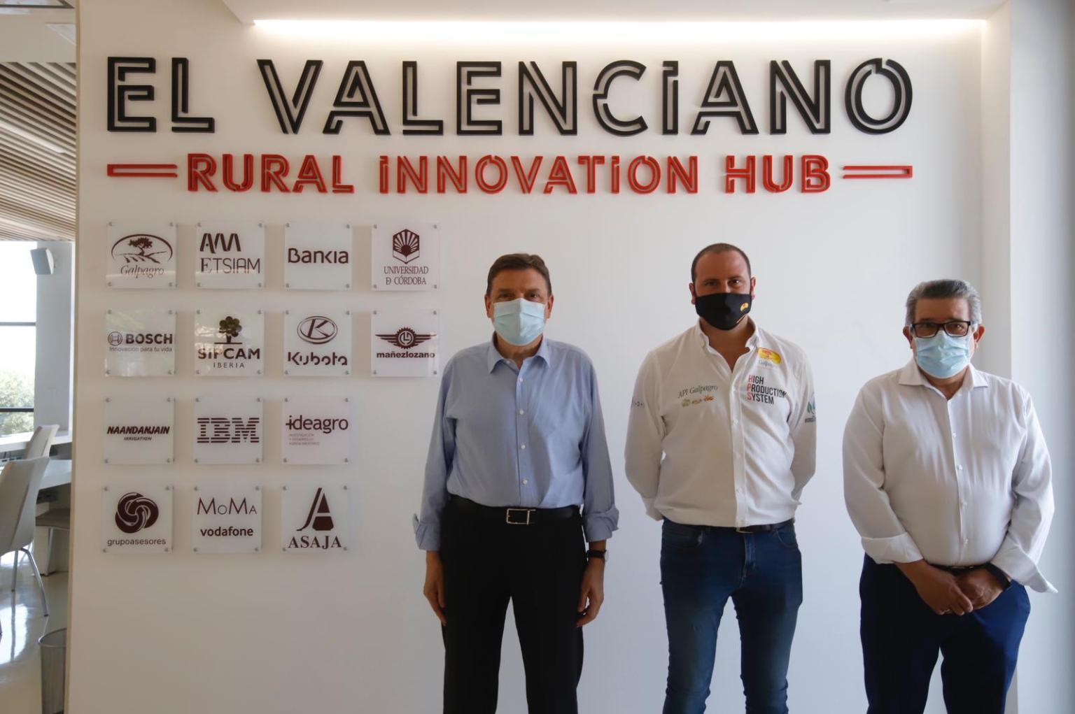 Se impone el modelo de innovación en el olivar: Rural Innovation Hub